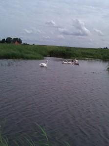 volgermeer polder